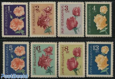 Roses 8v